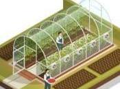 Comment bien protéger votre serre enterrée dans jardin
