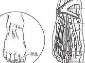 point méridien l'estomac (45E)